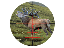 /upload/img/victory-fl-diavari-deer_in-reticle-rapid-z-7_224x168.png